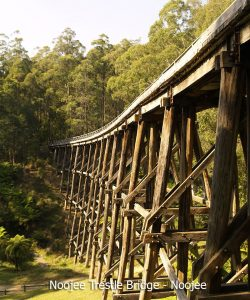 noojee-trestle-bridge_01